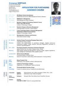 cv templates microsoft office word 2007 cv emmanuel briffaud anglais pdf par briffaud fichier pdf