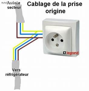 Branchement D Une Prise : installation d 39 un thermostat sur prise 220 volts ~ Dailycaller-alerts.com Idées de Décoration