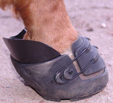 hufschuhe anstatt eisen mit pferden reisen