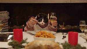 Christmas Eating GIF - Find & Share on GIPHY
