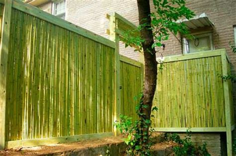 Brise Vue En Bambou La Canisse Bambou Une Cl 244 Ture De Jardin Et 233 Cologique Archzine Fr