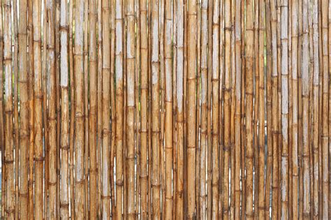 electronic fence free stock photo 12679 vertical bamboo poles as fence or