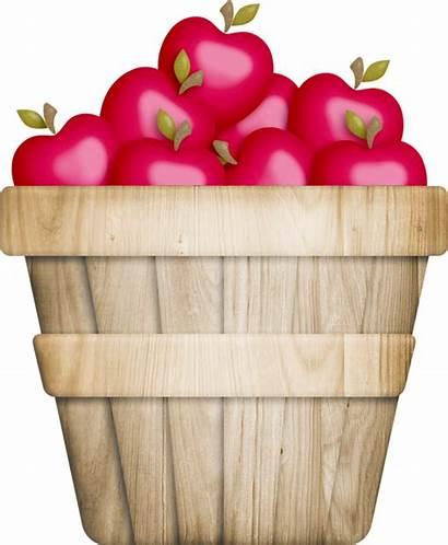 Basket Apple Apples Clipart Baskets Clip Cliparts