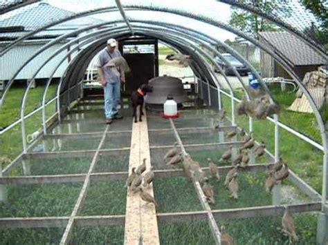 bird netting for uller bird pen avi