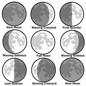 Activity: The Motions and Phases of the Moon