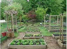 Backyard Organic Gardening Ideas How My Dad Transformed