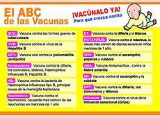 Del patógeno al hombro de tu bebé Blogs El Comercio Perú