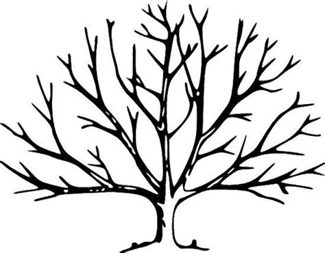 printable tree  leaves coloring page tree