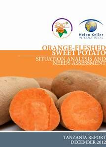 Orange-fleshed sweetpotato situation analysis and needs ...