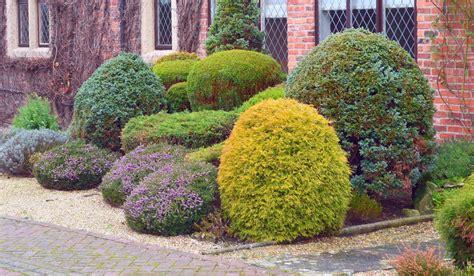 colorful bushes and shrubs 38 clever backyard shrub garden ideas