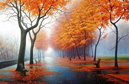 Nature Brilliant Colors Its