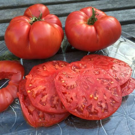 beefsteak tomato health benefits nutrition recipes