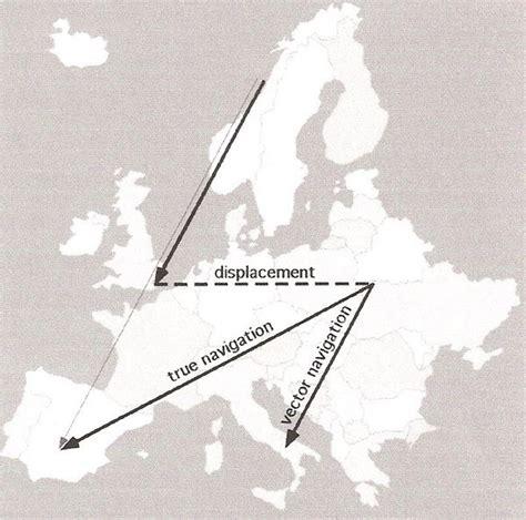 avian navigation and orientation