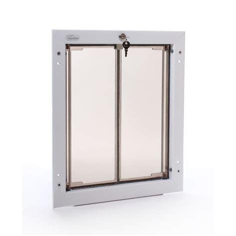 pet doors home depot plexidor performance pet doors 11 75 in x 16 in large