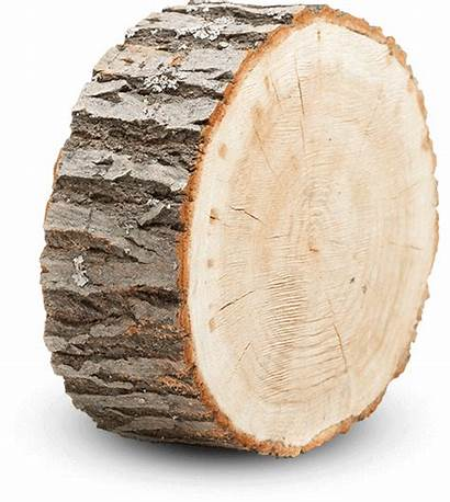 Wood Canadian Industry Vast Relationships Value Key