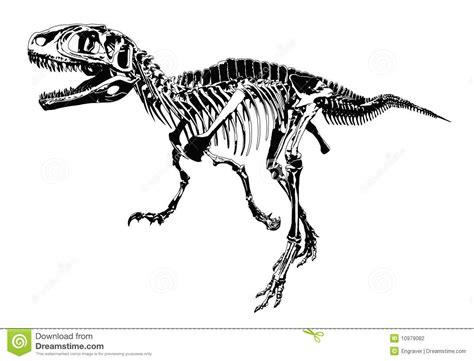 Poster Dino Skelet Google Zoeken Dinos Pinterest