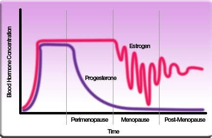 Tekort oestrogeen