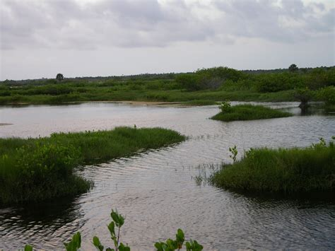 fishing river lagoon indian water spots mosquito action midway sky favorite