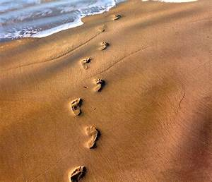 Footsteps - Cliparts.co