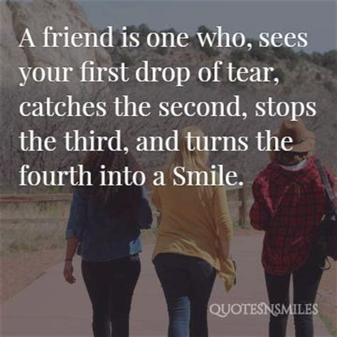 images  fun friendship picture quotes famous quotes