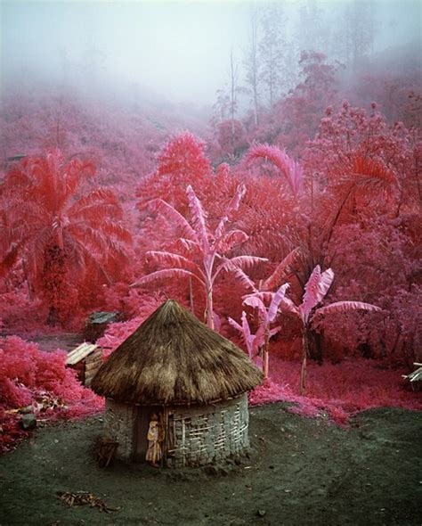 infrared heat l for plants q do colors exist ask a mathematician ask a physicist
