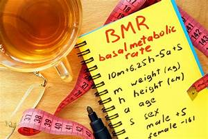 Resting Metabolic Rate Chart Bmr Calculator Basal Metabolic Rate