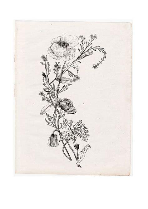 black  white wildflower tattoo google search