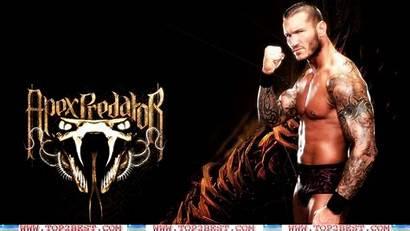 Randy Orton Wwe Wallpapers Tattoo Champion Viper