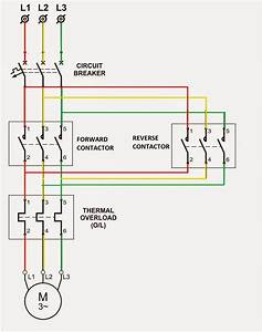 Control Wiring Diagram For Dol Starter