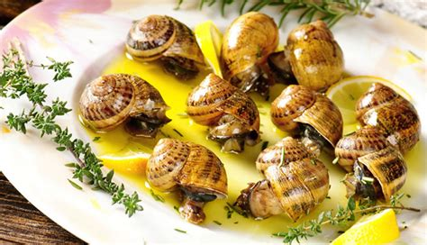 cuisine escargots image gallery escargot recipes