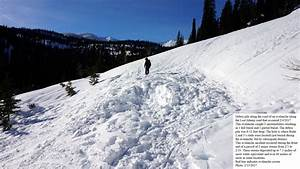 Avalanche Observation - Lost Johnny, Swan Range | Flathead ...