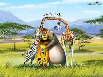 Funny Cartoons Wallpapers Cartoon Backgrounds Desktop Background