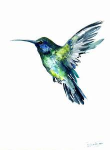 Flying Hummingbird, Original watercolor painting, 12 X 9 ...