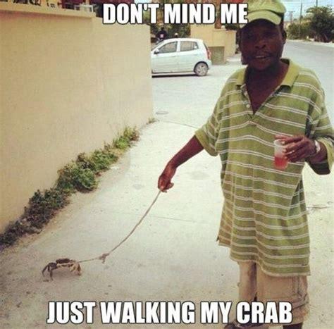 Crab Meme - crab meme funny pictures quotes memes jokes