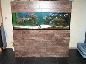 Schrank Bauen Lassen : aquarium schrank eigenbau home image ideen ~ Michelbontemps.com Haus und Dekorationen