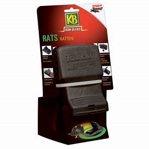Piege A Rat Castorama : pi ge pour rats castorama ~ Voncanada.com Idées de Décoration