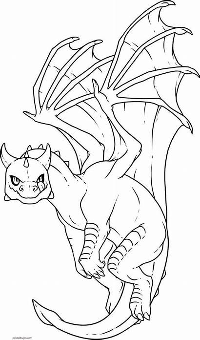 Dragon Coloring Draw Step Dragones Dragons Colorear