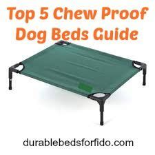 chew proof beds does your incessantly chew his or bed and you