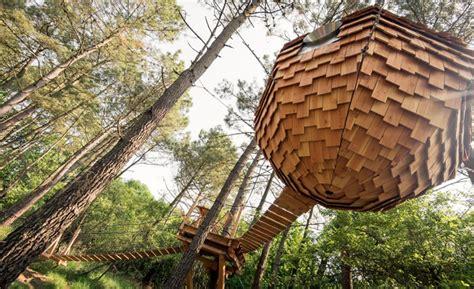 chambre d hote cabane dans les arbres lov nid nid perché dans les arbres nid suspendu