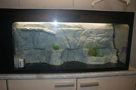 le decor de mon terrarium tortue deau douce forum
