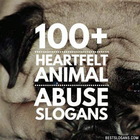 stop animal abuse cruelty slogans taglines