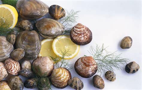 types of clams types of clams hard shell soft shell razor manila