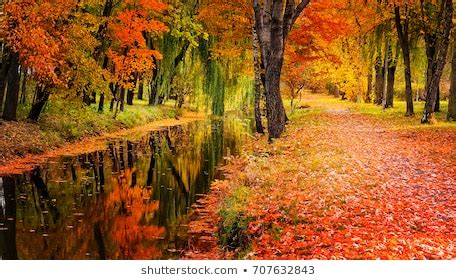 autumn landscape images stock  vectors shutterstock