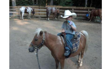 horseback riding pony ranch painted lake george ny ruggiero luzerne horse