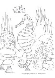 Seahorse Coloring Pages Printable