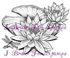 rubber stamps images stamp lilies drawing lily