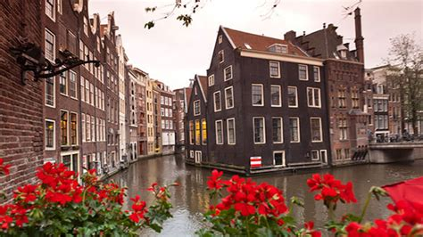 belgium holland rick steves tours