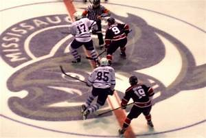 Steelheads lose 4-3 in shoot out to Saginaw | The Toronto ...
