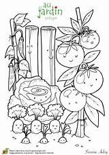 Coloring Pages Plantation Jardinage Potager Le Fruits Dessins Sur Vegetable Colorier Vegetables Adult Books Dessin Haricot Vegetal Hugolescargot Template Coloriage sketch template