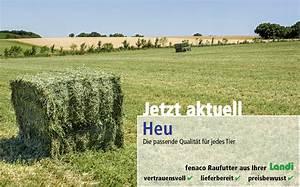 Heu Kaufen Für Pferde : raufutter einstreue nutztiere landi ~ Orissabook.com Haus und Dekorationen